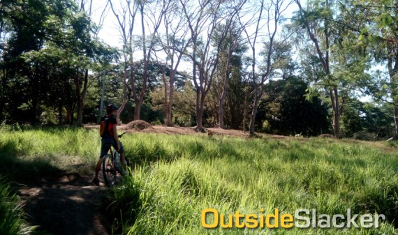 UP Diliman Trail