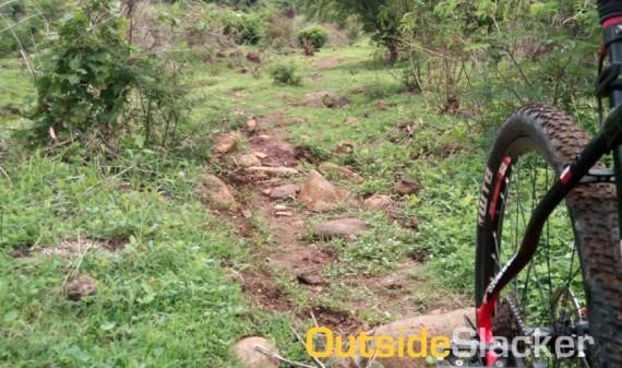 Pumarada Trail