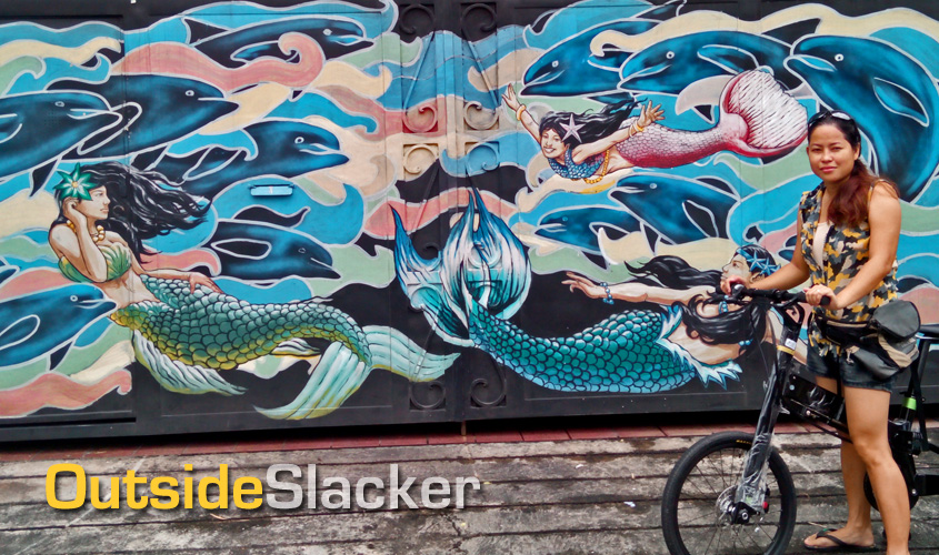 IFmove Folding Bike