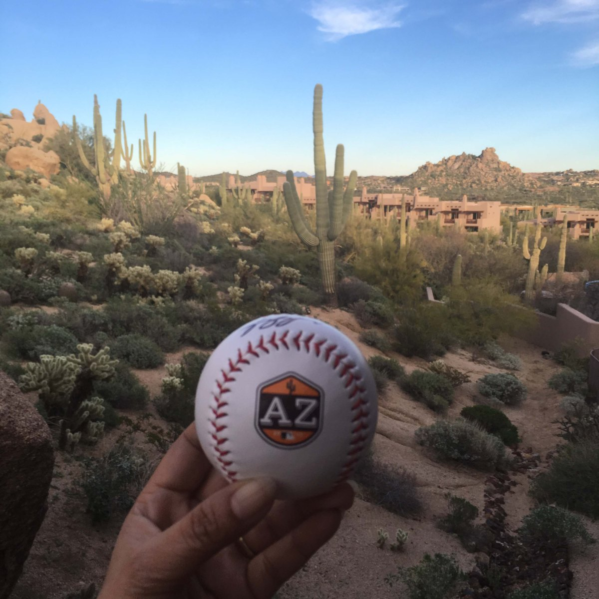 5 Resorts to catch the Cactus League in Arizona