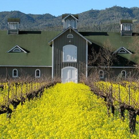 napa-valley-wineries