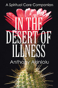 In the Desert of Illness book cover