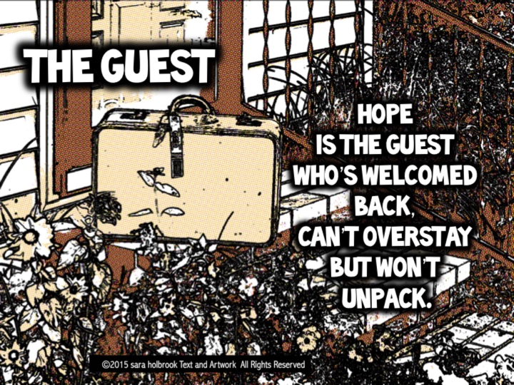 The Guest by Sara Holbrook