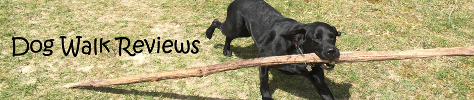 Dog Walk Reviews