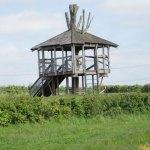 jeskyns-treehouse
