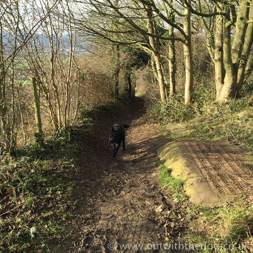 Blue Bell Hill footpath
