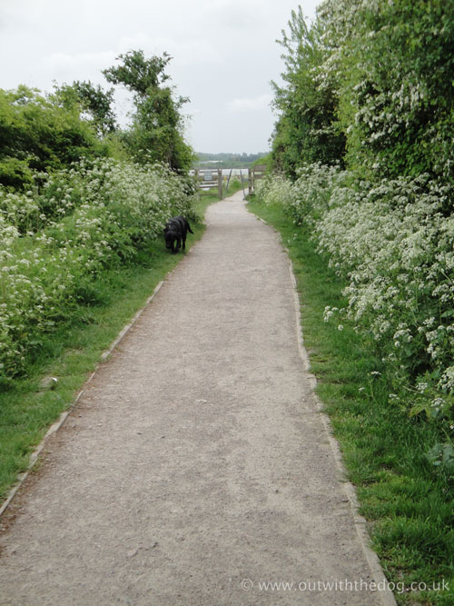 Riverside Country Park Footpath