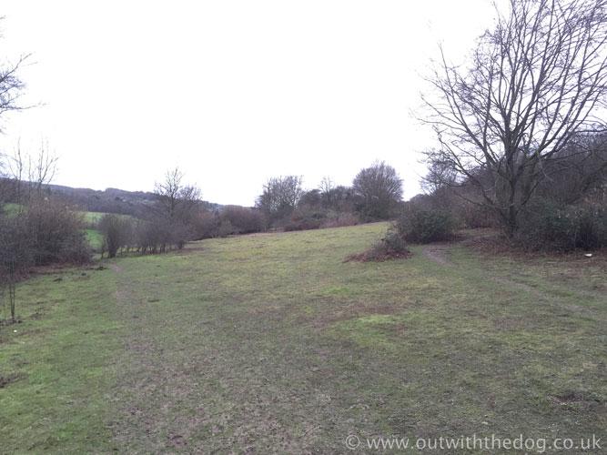 Queendown Warren - Foot Path Split.