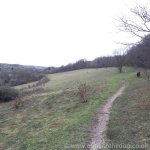 Queendown Warren - Footpath