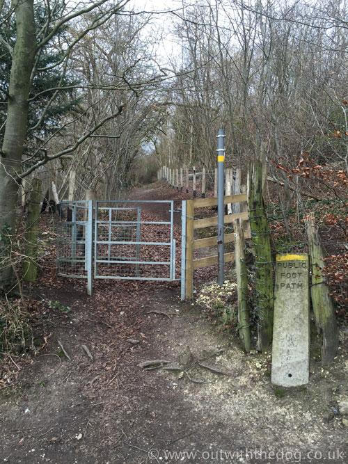 Queendown Warren - Entrance to the next field