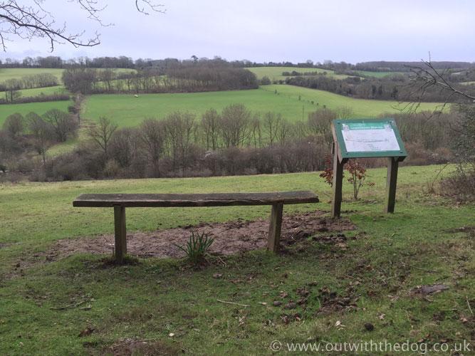 Queendown Warren - Seat with a view