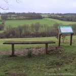 Queendown Warren - Seat with a view