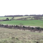 Queendown Warren - View of field