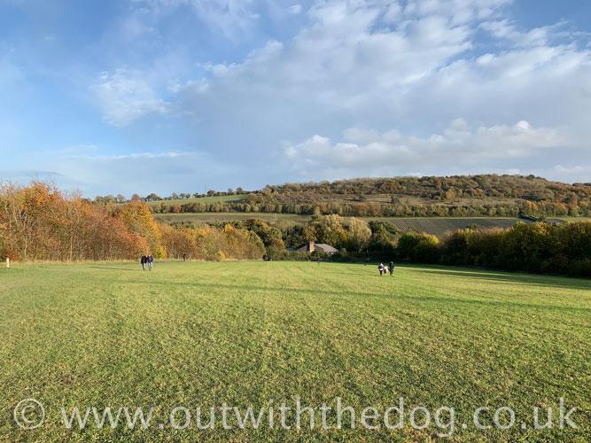 Lullingstone Country Park: View towards car park