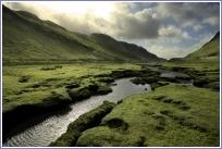 Zones de nature vierge : 1 % seulement du territoire européen