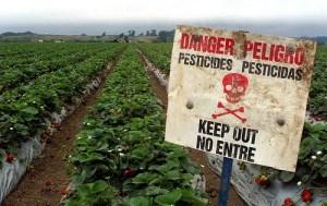 Biodiversité : haro sur les aides publiques pernicieuses