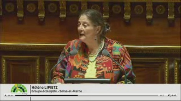 """Hélène Lipietz, groupe écologiste du Sénat, explique pourquoi son groupe est """"insatisfait"""" du travail mené par la commission d'enquête."""