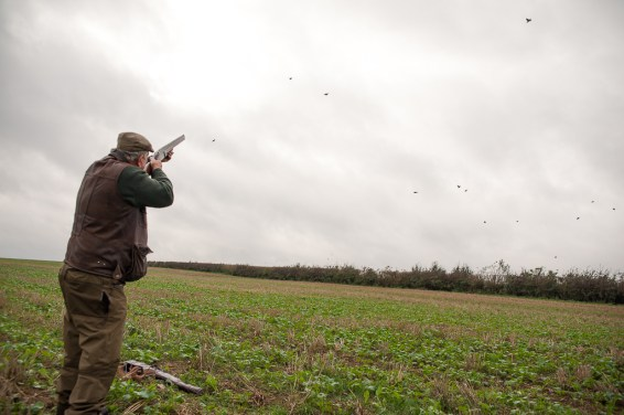 Game Shoot_Stapleford_013