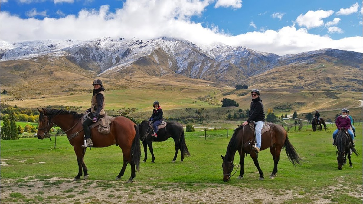 Best things to do on a day trip from Queenstown or Wanaka - Cardrona Valley