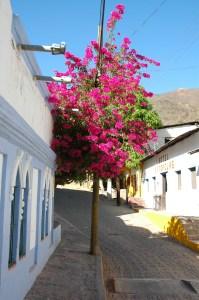 Batopilas - narrow street copy
