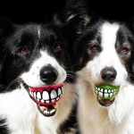 Funny and Unsual Gifts For Dogs