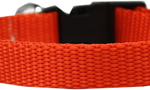 Orange Dog Collar - Nylon