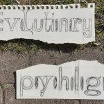 Evolutie psychologie