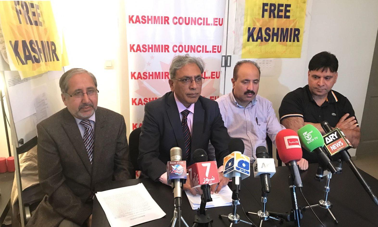 Ali Raza Syed Kashmir Council Europe