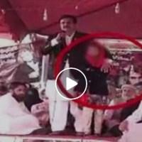 Video of PML-N senator 'groping' girl during Karachi protest sparks anger online