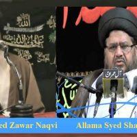 علامہ شمشاد رضوی کونسل آف علماء امامیہ شنگن کے صدر منتخب: علامہ ڈاکٹر زوار شاہ کی مبارکباد