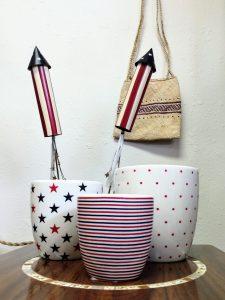 Patriotic Plant Pots