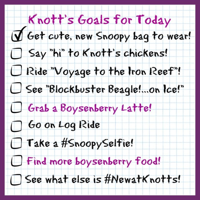 knotts-goals-for-today