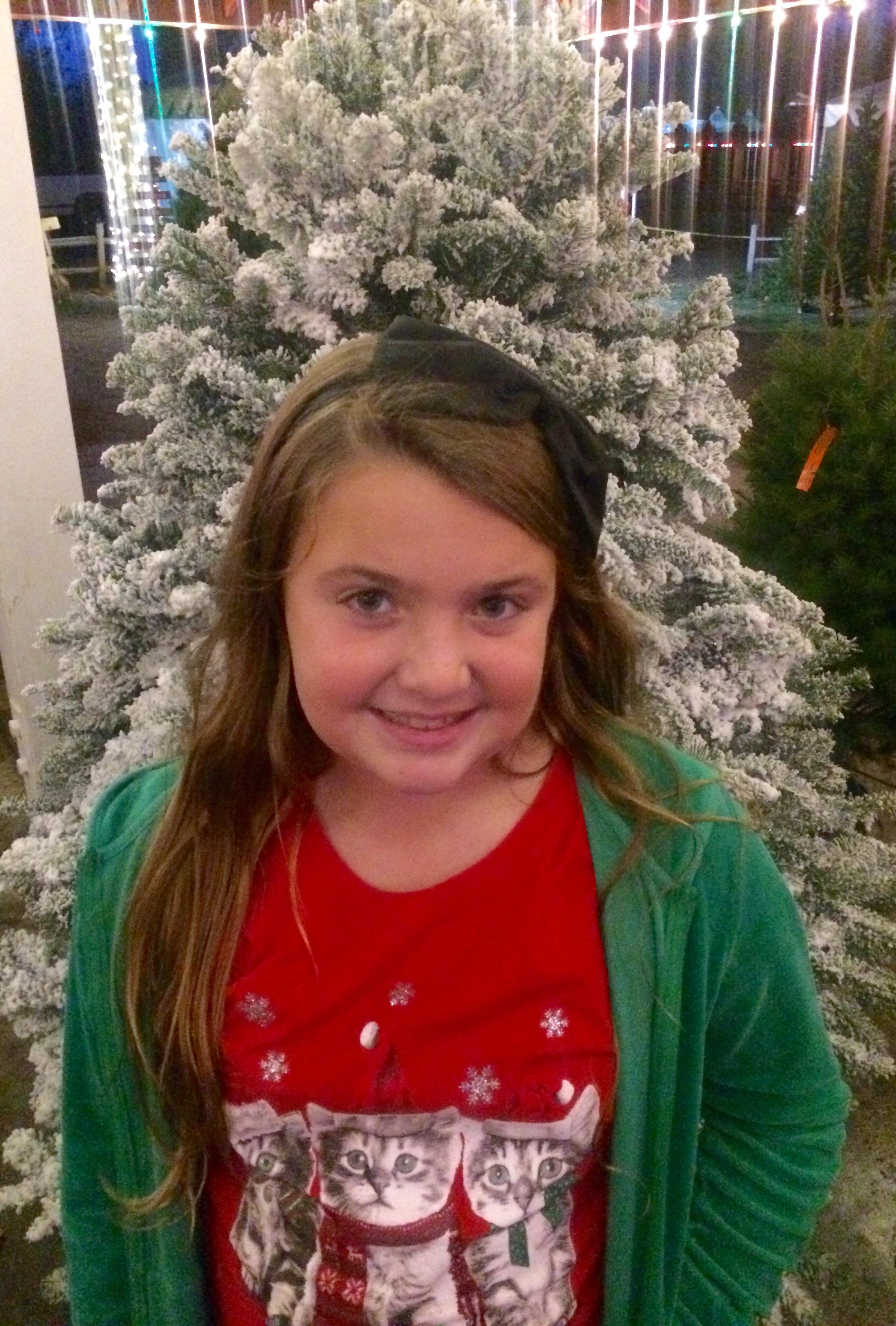 Irvine Park Railroad Christmas Tree