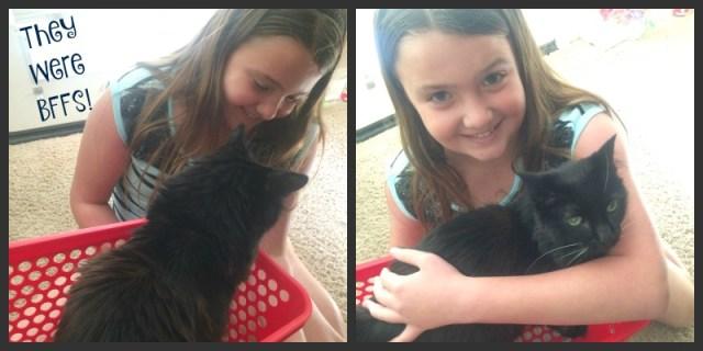 pet-adoption-they-were-bffs