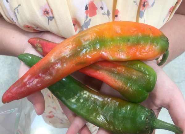 hatch-chile-in-store-2