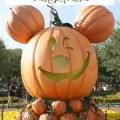 10-things-to-do-during-halloween-time-at-disneyland-resort
