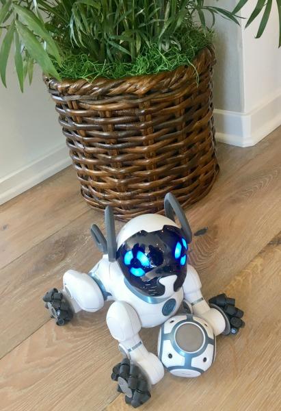 cox-smart-home-robot