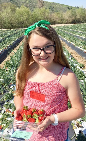 tanaka-farms-strawberries