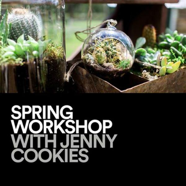 jenny-cookies