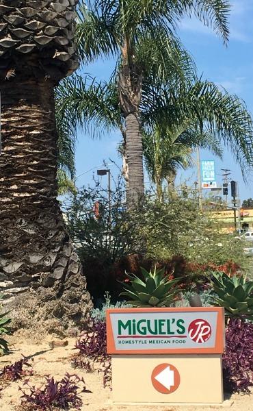 miguels-jr-outside