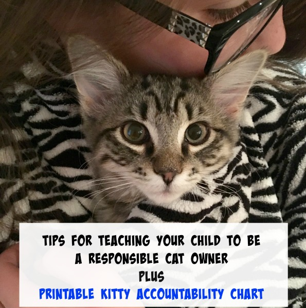 tips-for-teaching-your-child-to-be-a-responsible-cat-owner-plus-printable-kitty-accountability-chart