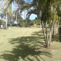 in het resort