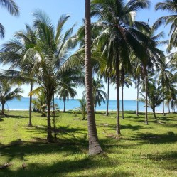 This Holiday Villa Bankrut