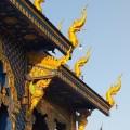 slangkop blauwe tempel