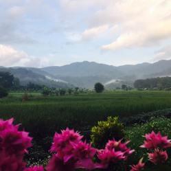 omgeving Chiangrai