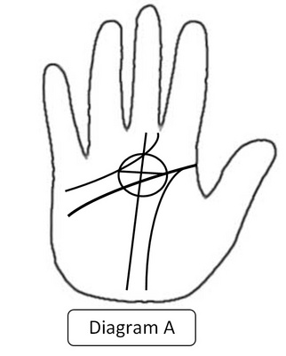 Ovi Magazine : Quantum Palmistry: The