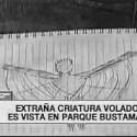 Criatura alada de 2 metros de altura é avistada em Santiago do Chile 38