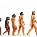Até 2050 Homo sapiens pode evoluir para Homo optimus 16