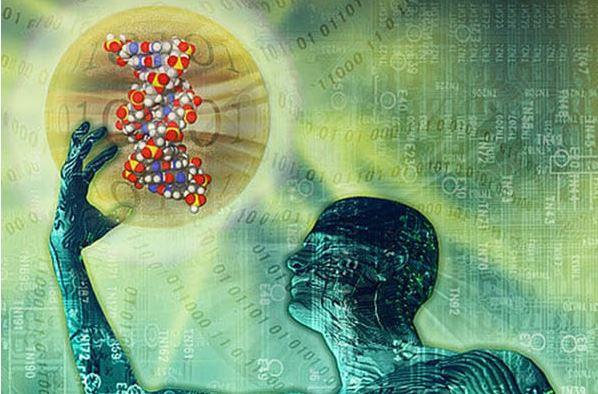 Cientistas criam organismo com DNA sintético