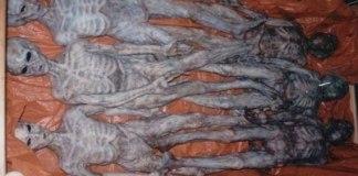 corpos de alienígenas